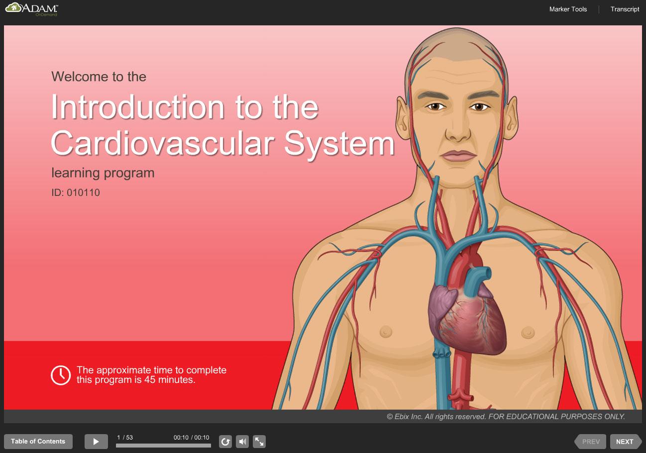 Adam Interactive Anatomy Online Adam Education 9871565
